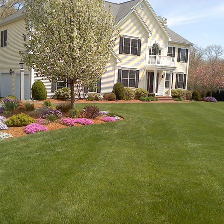 Your one stop landscape solution in the Foxboro area - Motta Landscaping - Lawn Weed Control
